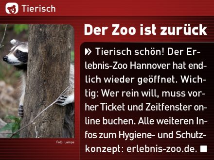 Zoo-Tiere_31